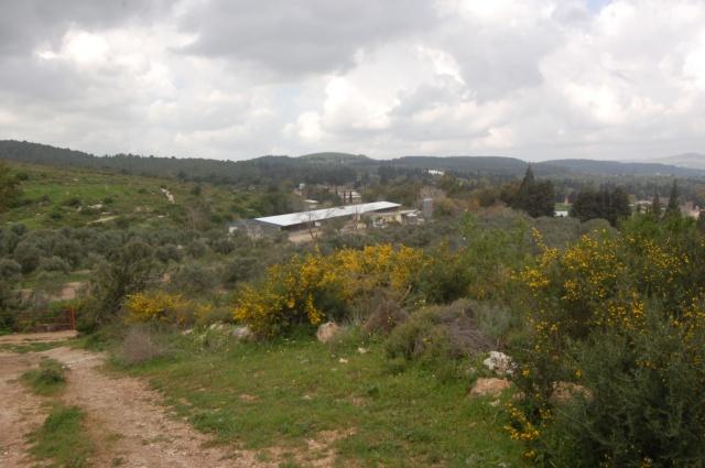 Mishmar Ha'emek Kibbutz