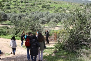 Kibbutz 3
