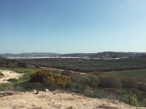 View from Kibbutz Magal, the far left mountains are Palestinian, the right mountains are Arab Israeli, and the farm is the Kibbutz